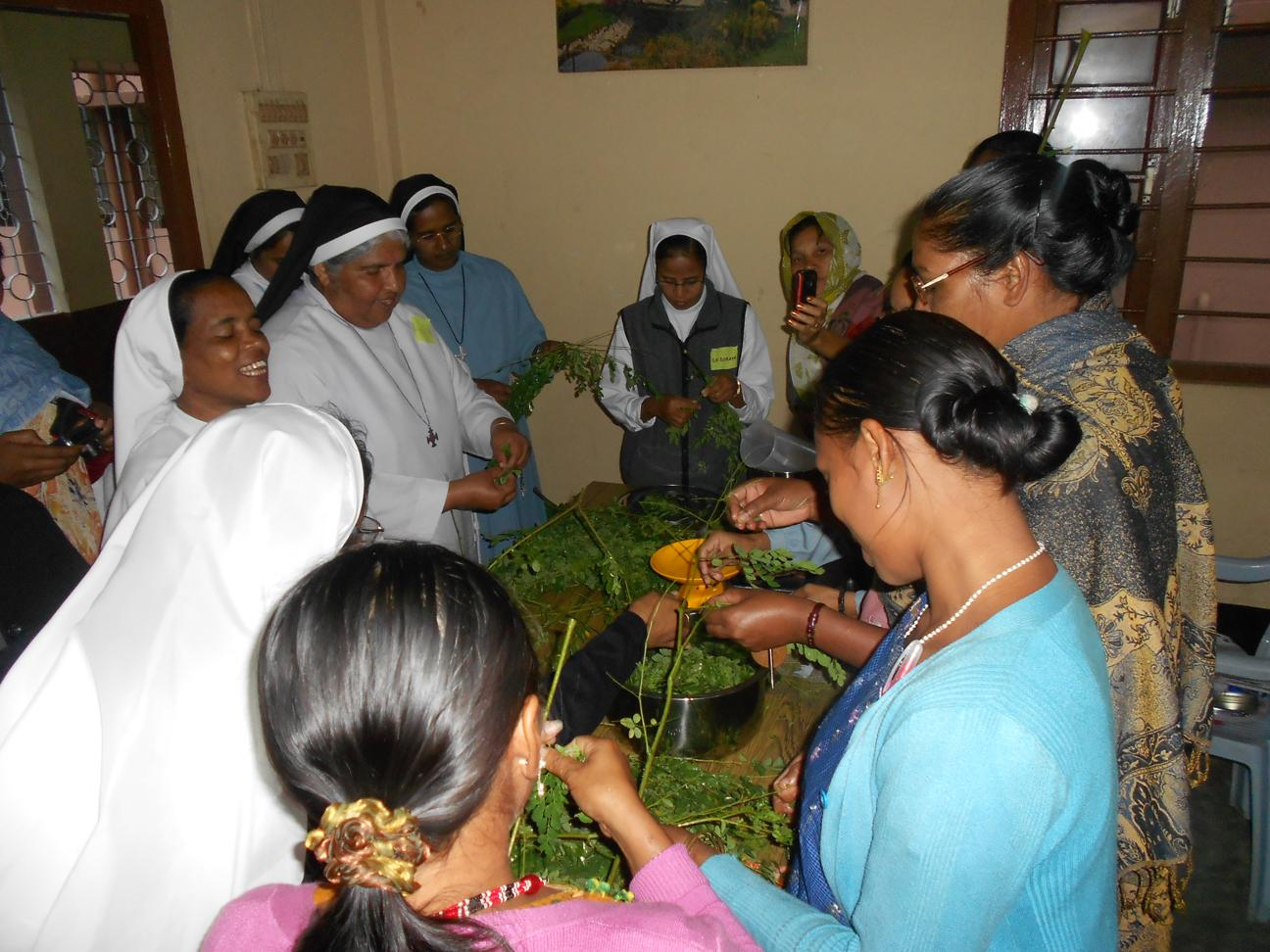 1. Participants harvest Moringa leaves to prepare tonic (for malnurished and anemic patients).JPG